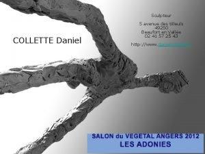 Sculpteur COLLETTE Daniel 5 avenue des tilleuls 49250
