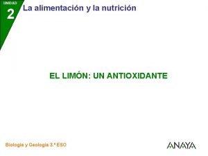 UNIDAD 2 La alimentacin y la nutricin EL