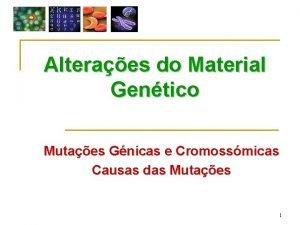 Alteraes do Material Gentico Mutaes Gnicas e Cromossmicas