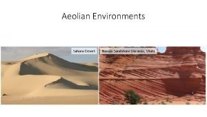 Aeolian Environments Sahara Desert Navajo Sandstone Jurassic Utah