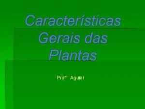Caractersticas Gerais das Plantas Prof Aguiar Conquistas morfofisiolgicas