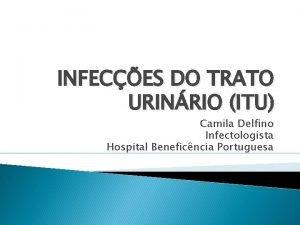 INFECES DO TRATO URINRIO ITU Camila Delfino Infectologista