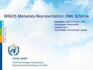 WIGOS Metadata Representation XML Schema Luisa Ickes WIGOS