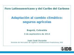 Foro Latinoamericano y del Caribe del Carbono Adaptacin
