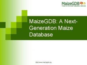 Maize GDB A Next Generation Maize Database http