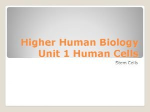 Higher Human Biology Unit 1 Human Cells Stem