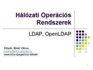 Hlzati Opercis Rendszerek LDAP Open LDAP Elad Bilicki