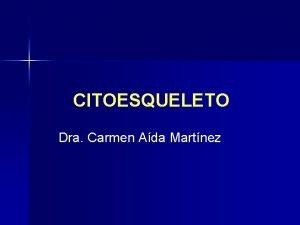 CITOESQUELETO Dra Carmen Ada Martnez Propiedades de los