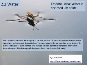 2 2 Water Essential idea Water is the