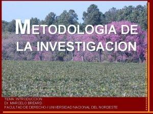 METODOLOGIA DE LA INVESTIGACION TEMA INTRODUCCION Dr MARCELO