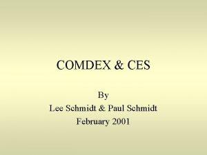 COMDEX CES By Lee Schmidt Paul Schmidt February