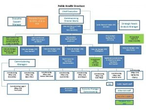 Public Health Structure Chief Executive Support for DPH