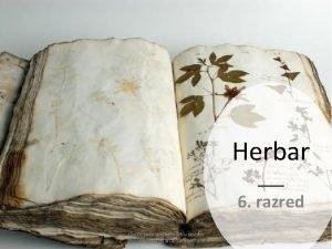 Herbar 6 razred Upute za izradu herbara u