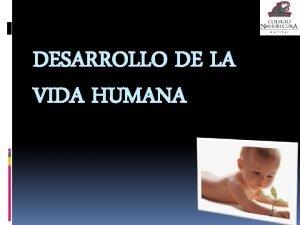 DESARROLLO DE LA VIDA HUMANA Fecundacin La fecundacin