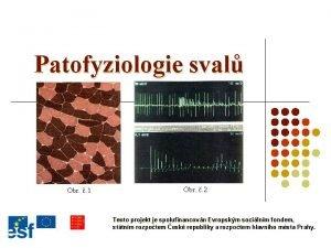 Patofyziologie sval Obr 1 Obr 2 Tento projekt