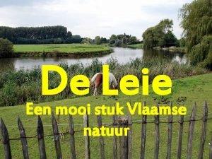 De Leie Een mooi stuk Vlaamse natuur i
