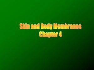 Body membranes Cover body surfaces Line body cavities