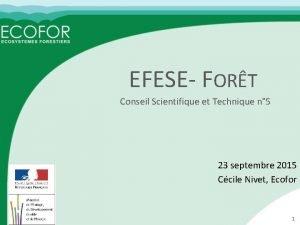 EFESE FORT Conseil Scientifique et Technique n 5