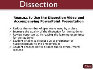 Dissection 101 Reasons to Use the Dissection Video
