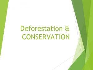 Deforestation CONSERVATION Deforestation By Sid Steinberg and Ben