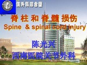 Spine spinal cord injur Spine spinal cord injury