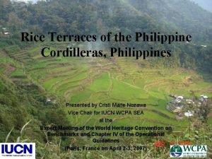 Rice Terraces of the Philippine Cordilleras Philippines Presented