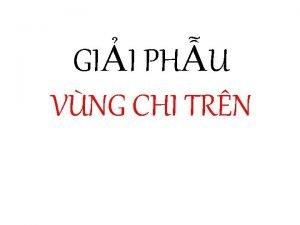GII PHU VNG CHI TRN XNG CHI TRN