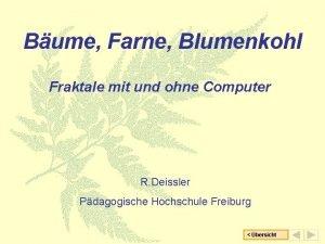 Bume Farne Blumenkohl Fraktale mit und ohne Computer