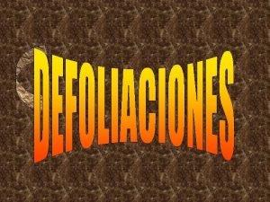 Foto S Belalczar Foto S Belalczar TRATAMIENTOS DEFOLIACIONES