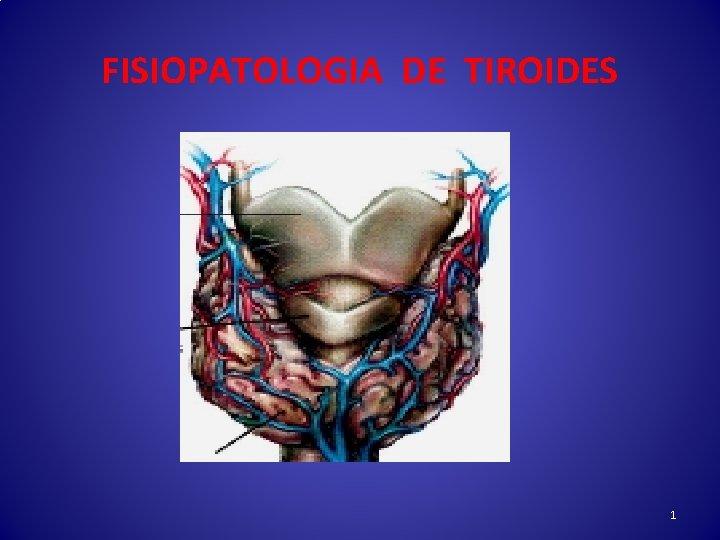 FISIOPATOLOGIA DE TIROIDES 1 GLANDULA TIROIDES 2 EJE