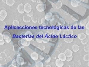 Aplicacciones tecnolgicas de las Bacterias del cido Lctico