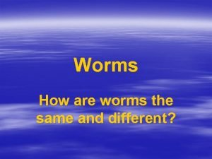 Worms How are worms the same and different