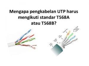 Mengapa pengkabelan UTP harus mengikuti standar T 568