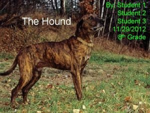 The Hound By Student 1 Student 2 Student