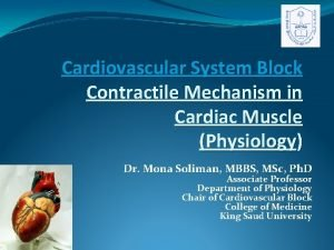 Cardiovascular System Block Contractile Mechanism in Cardiac Muscle