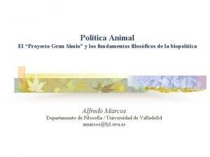 Poltica Animal El Proyecto Gran Simio y los