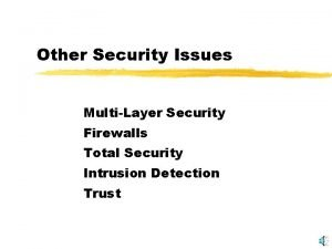 Other Security Issues MultiLayer Security Firewalls Total Security