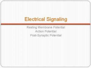 Electrical Signaling Resting Membrane Potential Action Potential PostSynaptic