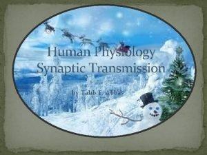 Human Physiology Synaptic Transmission by Talib F Abbas