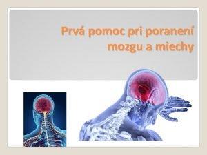 Prv pomoc pri poranen mozgu a miechy Poranenie