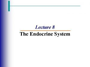 Lecture 8 The Endocrine System The Endocrine System