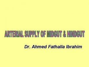 Dr Ahmed Fathalla Ibrahim SUPERIOR MESENTERIC ARTERY SUPERIOR