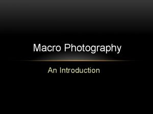 Macro Photography An Introduction Macro Photography Macro photography