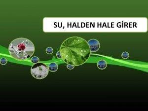SU HALDEN HALE GRER SU HALDEN HALE GRER
