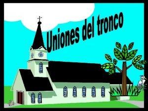 COLUMNA VERTEBRAL UNIONES DEL TRONCO UNIONES DEL TORAX