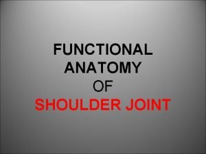 FUNCTIONAL ANATOMY OF SHOULDER JOINT ARTICULATION Articulation is