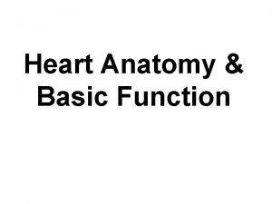 Heart Anatomy Basic Function 1 Cardiovascular Function Cardiovascular
