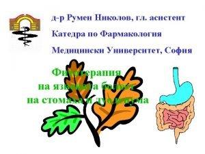 Atropa Belladonna Radix Belladonnae xtractum Belladonnae Atropin Hyoscyamus