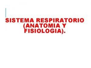SISTEMA RESPIRATORIO ANATOMIA Y FISIOLOGIA El aparato respiratorio