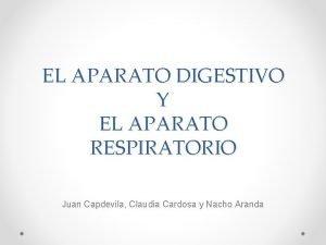 EL APARATO DIGESTIVO Y EL APARATO RESPIRATORIO Juan